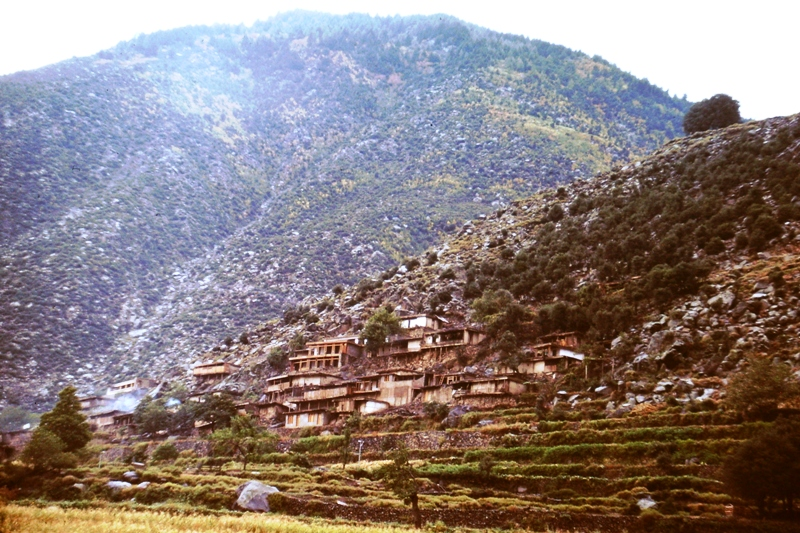 Swat Valley – Kalam - Terraces
