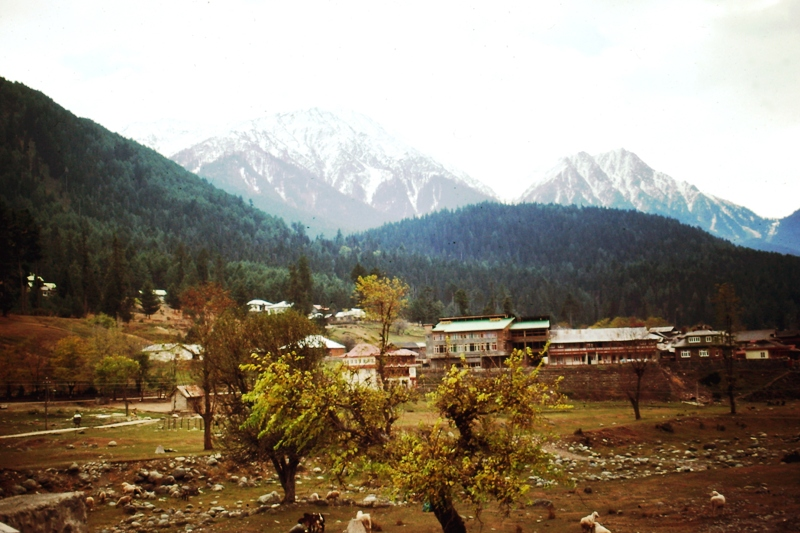 Kashmir – Pahalgam – Mountains