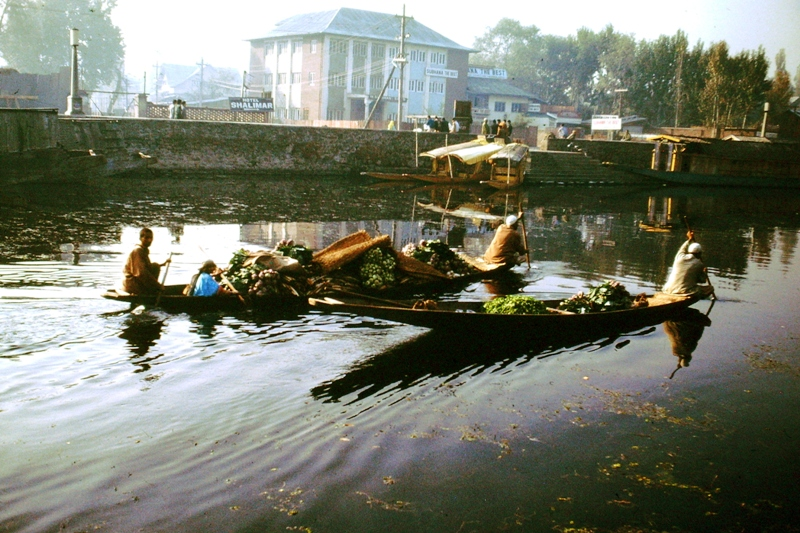Srinagar – Vegetable boats on their way to market
