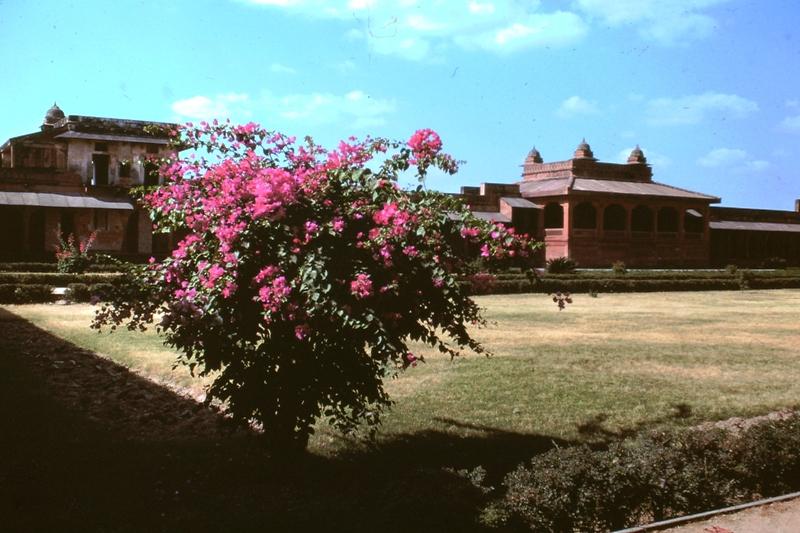Fatehpur Sikri – Courtyard