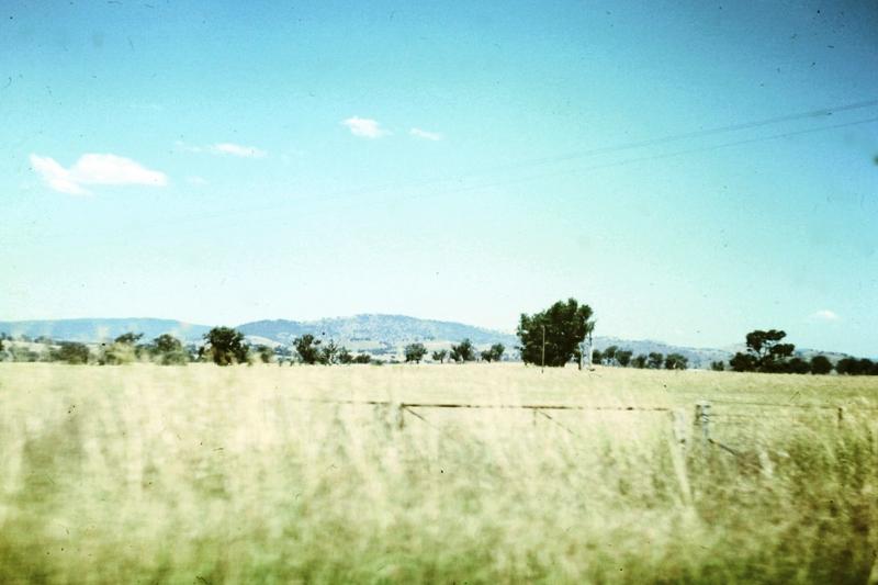 Parched landscape