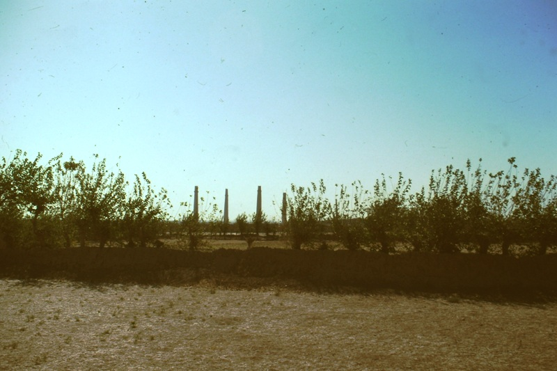 Herat – distant view of ancient minarets